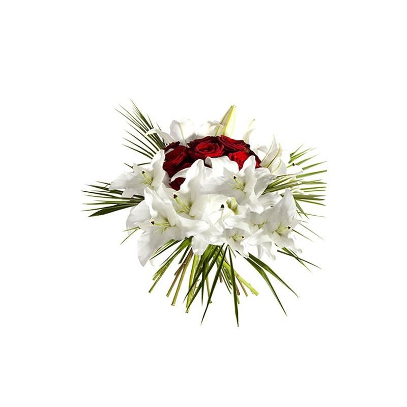 Photo de la plante en pot deuil Animum