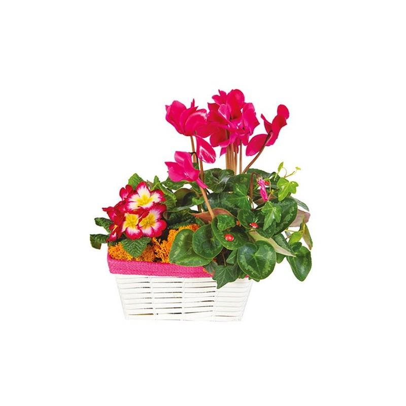 Photo de la composition florale Auletica pour le deuil