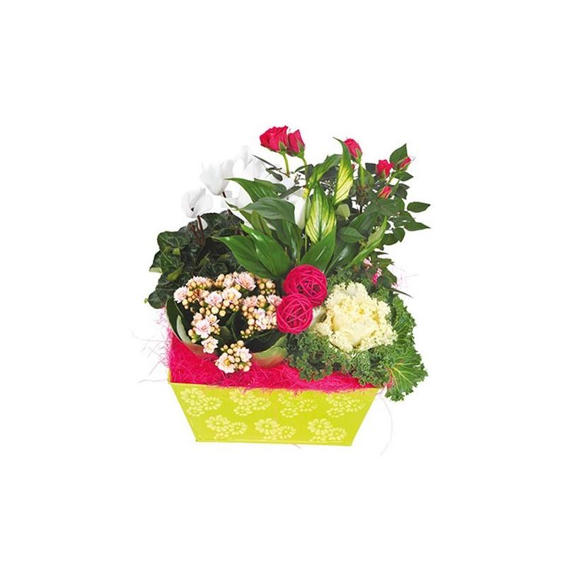 Geminium bouquet de fleurs pour un enterrement