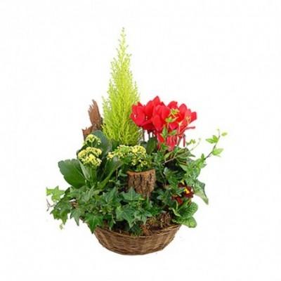 Louangel est une composition florale pour un enterrement