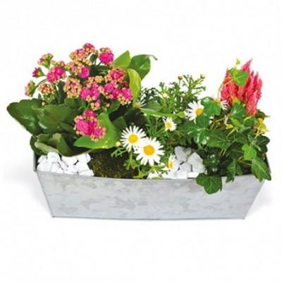 Photo de la jardinière de devant de cercueil