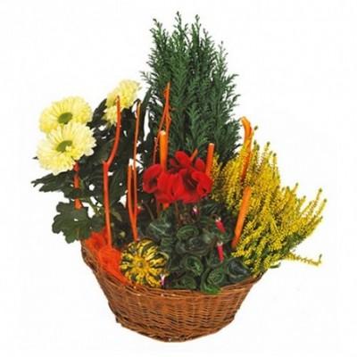 Création florale Equinoxe dédiée aux obsèques