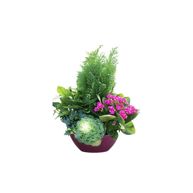 Photo de la composition florale Passeo pour le deuil.