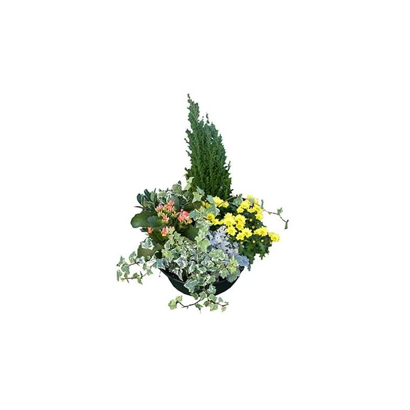 Composition florale pour les obseques Aquarius