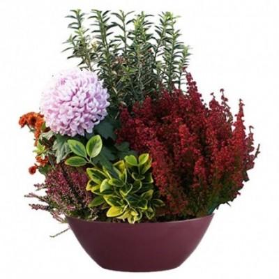 Véritis est un ensemble de fleurs pour le deuil