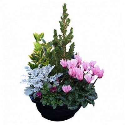 Composition florale pour le deuil Eden